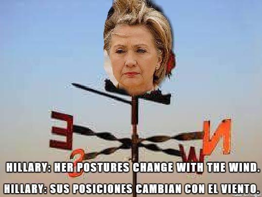 Hillary wind vane